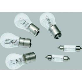 Kit ampoules de rechange - 12V - pour remorque ( 2 navettes, 2 poirettes bifil, 2 poirettes monofil) TRIGANO