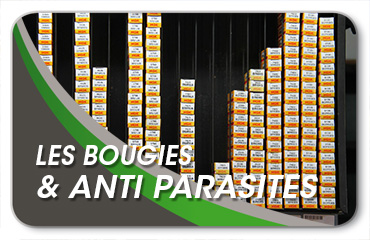 Bougies et anti parasites