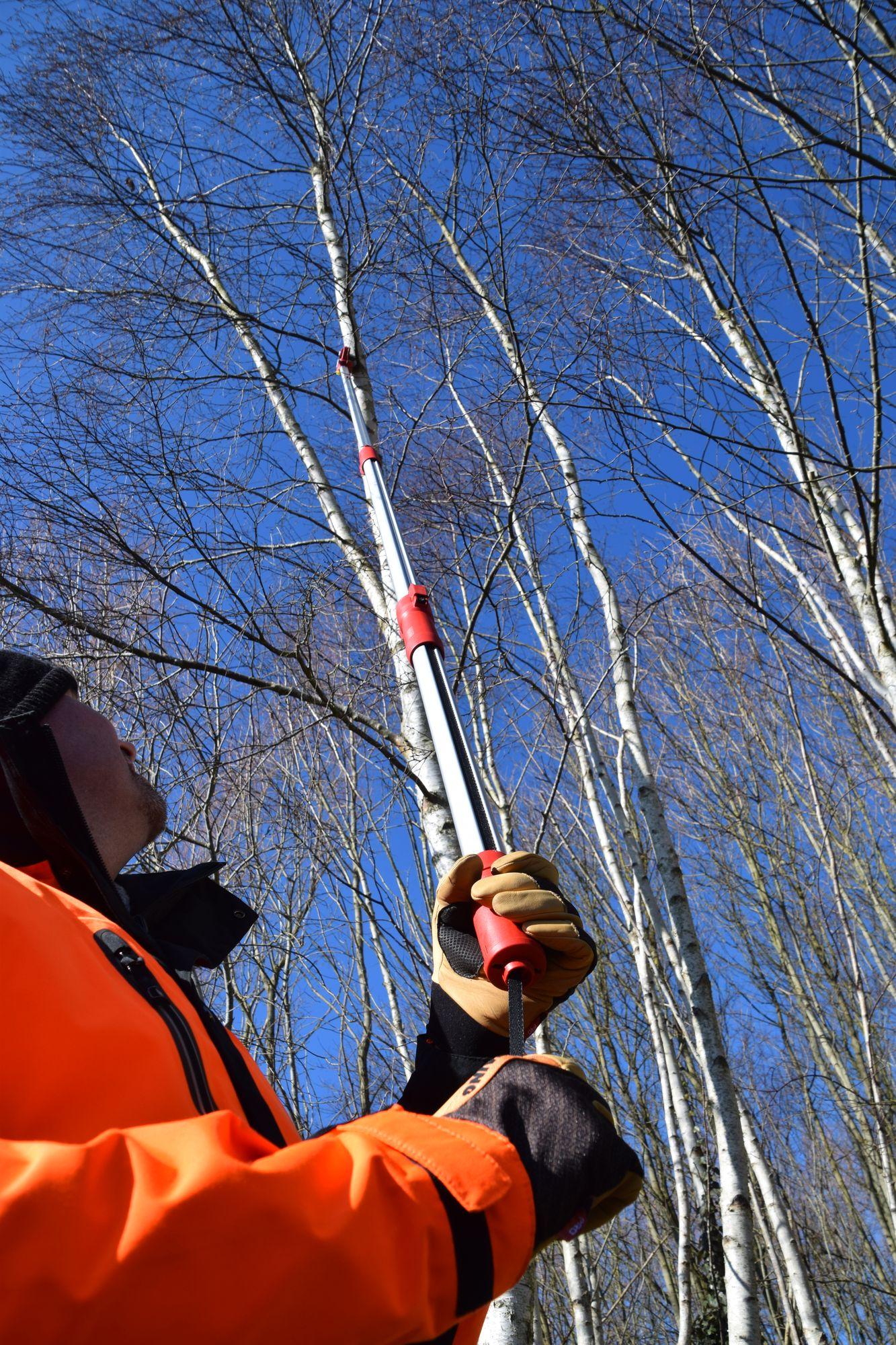 Taillez en hauteur avec les outils WOLF