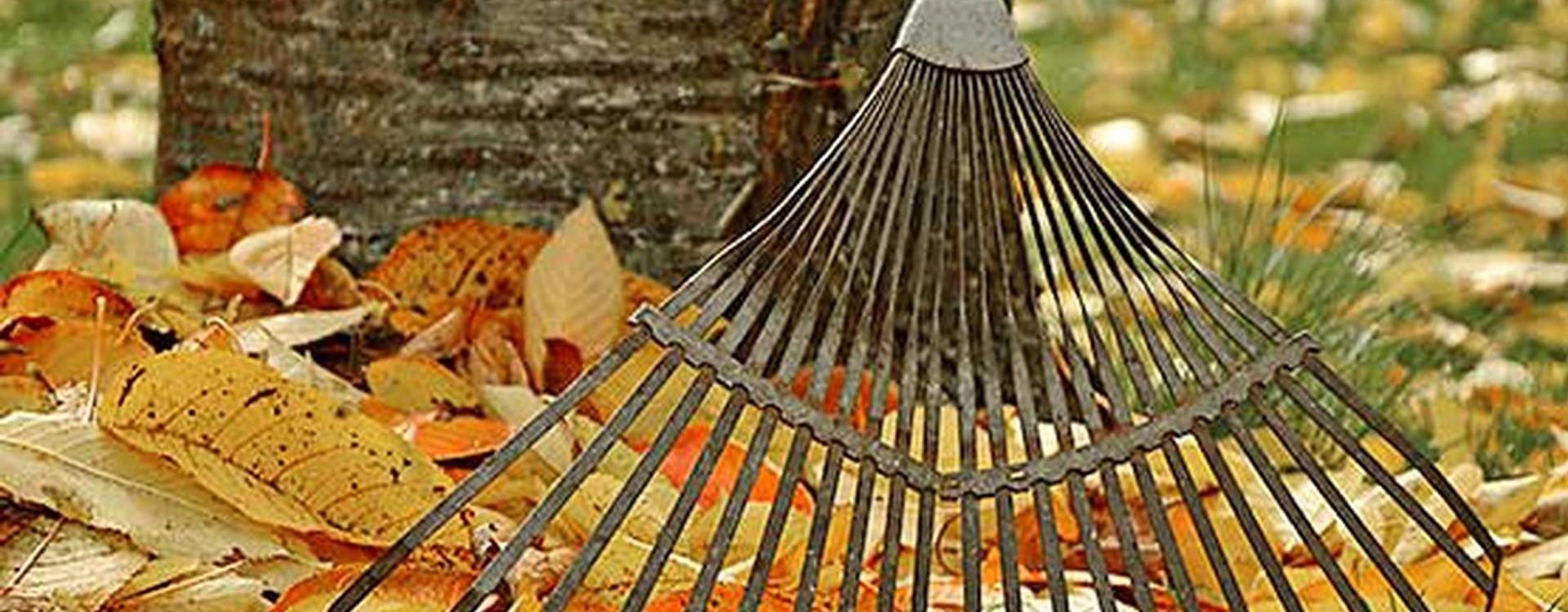 Comment entretenir son jardin en hiver : le matériel indispensable