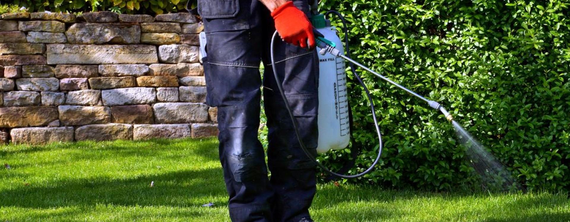 Achat pulvérisateur électrique pas cher : ce qu'il faut connaître pour bien choisir