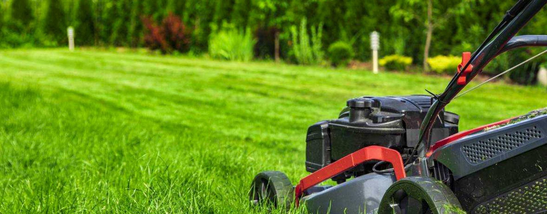 Réviser ou faire réparer votre tondeuse : Jardins Loisirs vous accompagne