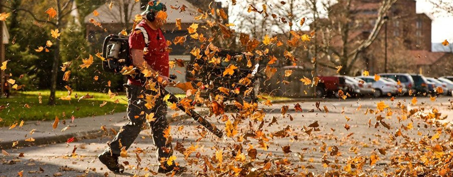 Le souffleur : l'outil indispensable pour se débarrasser des feuilles mortes